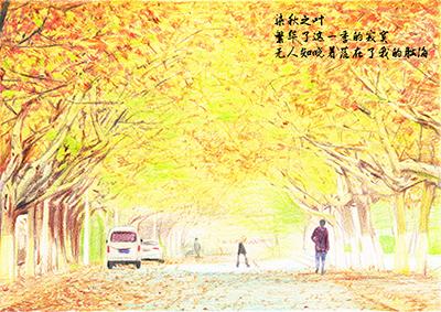 枣庄学院《印象枣院》手绘明信片——秋景|图形/图案
