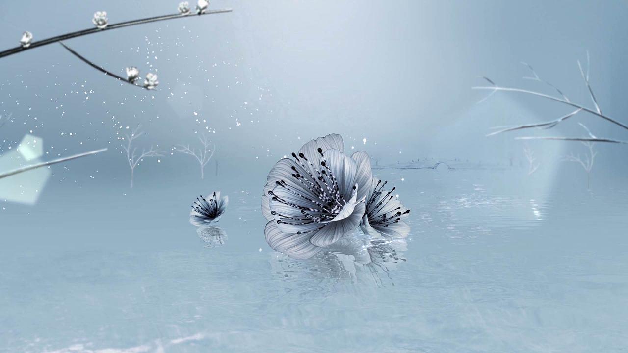 西湖明珠电视台 手绘视觉