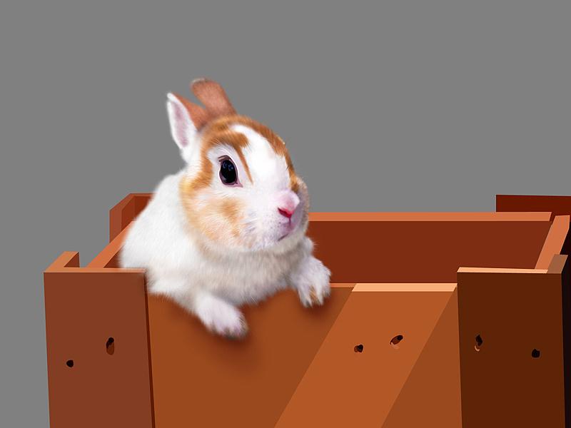 小兔袜子织法图解
