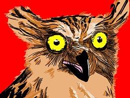 漫画猫头鹰