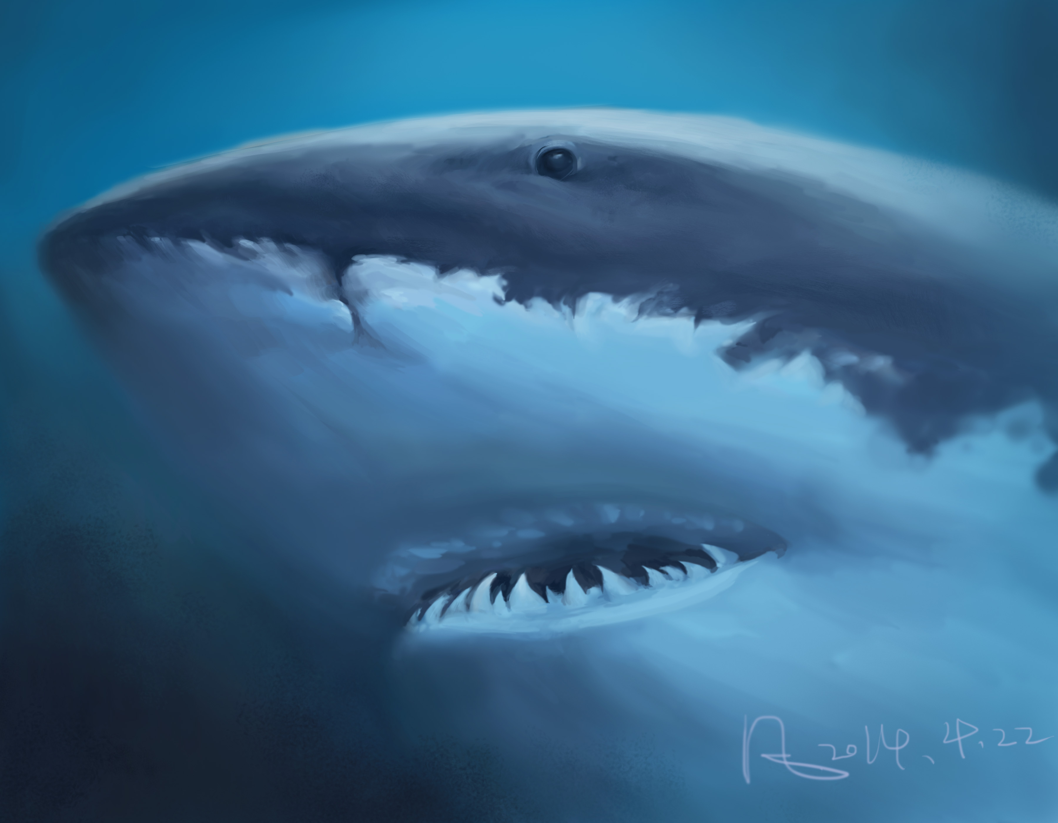海洋鲨鱼简笔画