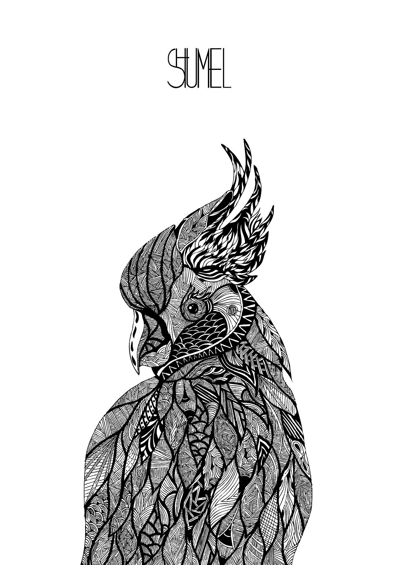 原创手绘鹦鹉