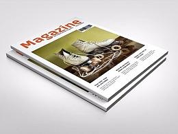30页多功能杂志风画册模板