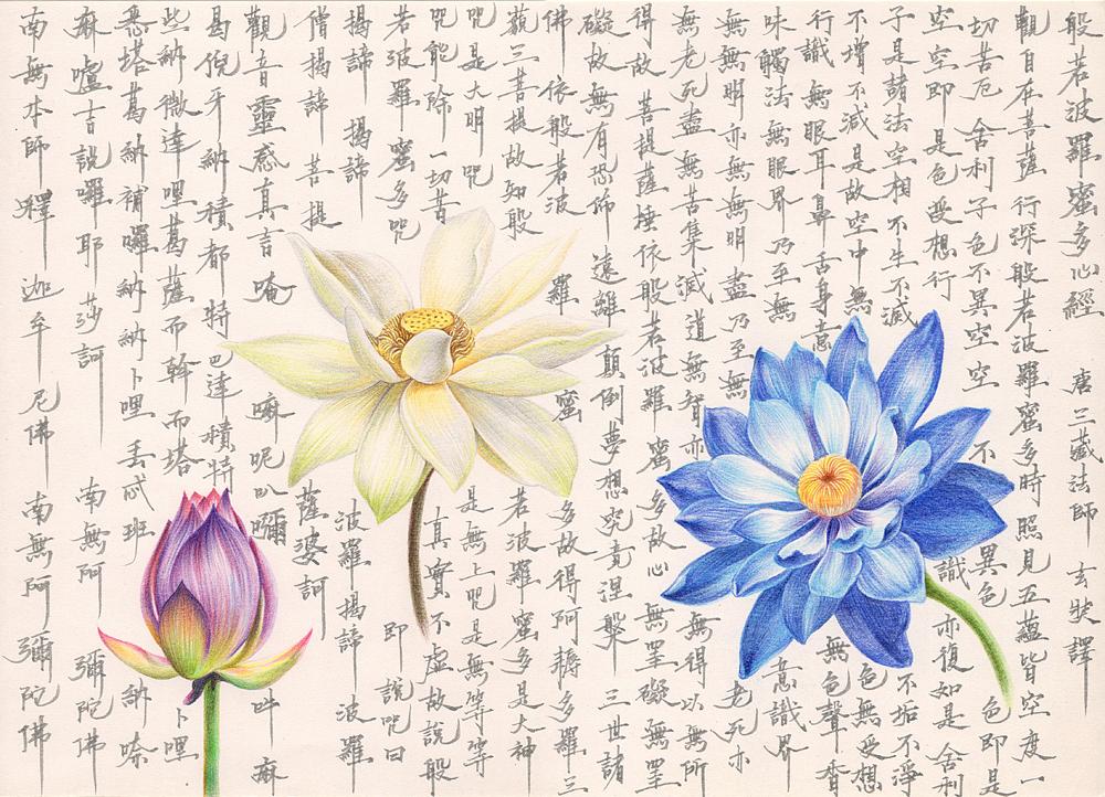 【《心经》和莲花】 手绘过程