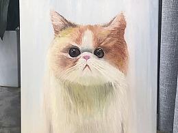 [油画-猫咪]我辣么可爱,还不给我小鱼干么