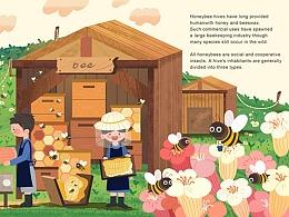 蜜蜂和剪羊毛