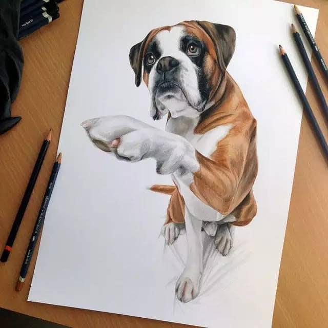 蜜约美术花艺工作室—彩色铅笔手绘