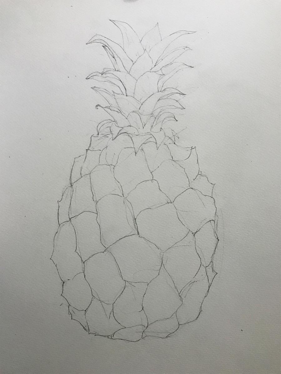 水彩手绘小菠萝