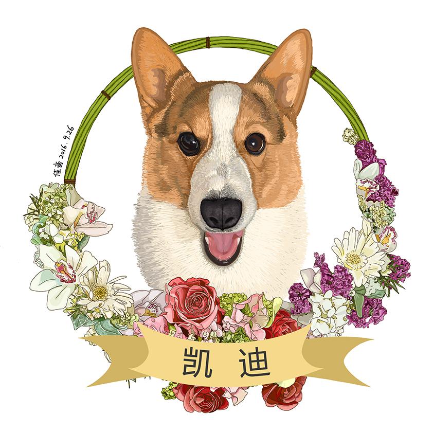 壁纸 动漫 动物 狗 狗狗 卡通 漫画 头像 842_842