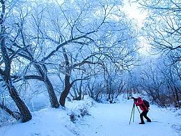 冬季摄影|雾景摄影技巧跟老师一起学起来