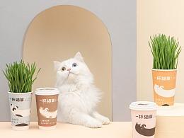 【摄影】猫连吃草都这么有仪式感