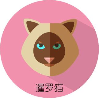 扁平化风格的卡通小动物肖像(暹罗猫)