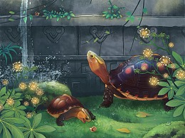 此间趣——水中生灵的世界有多精彩你想象不到!