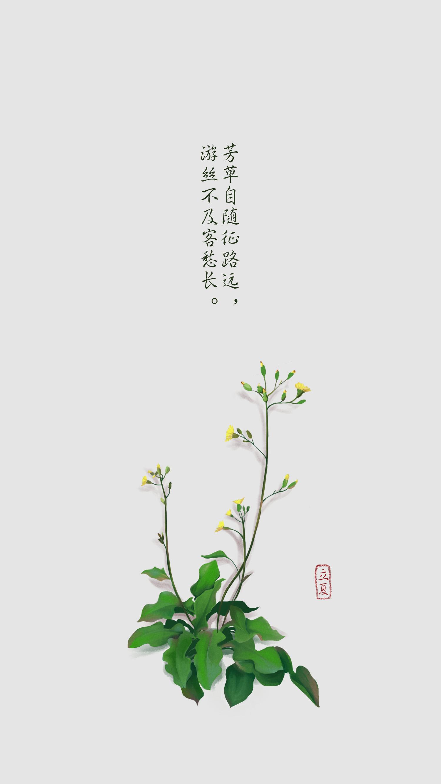 背景墙手绘墙角植物