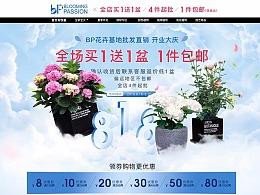 【bp花卉】2019年8月批发店开业店铺首页