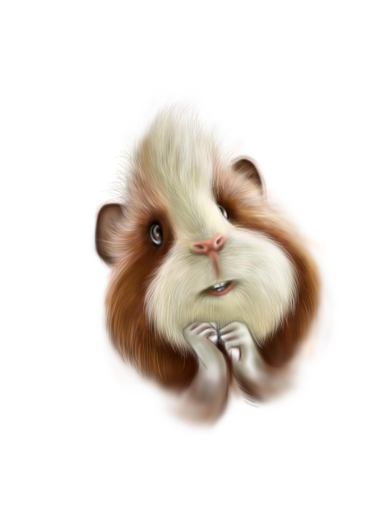 毛发类动物手绘