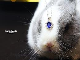 alice的兔子