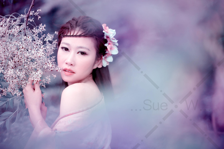 紫霞手绘高清壁纸