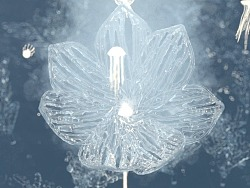 抽象水体艺术短片 | Mobius