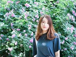 2018年5月份北京的蔷薇花和少女花花。
