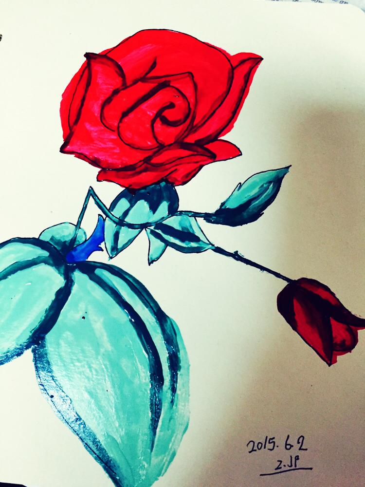 手绘玫瑰花|纯艺术|水彩|jenniferfer - 原创作品