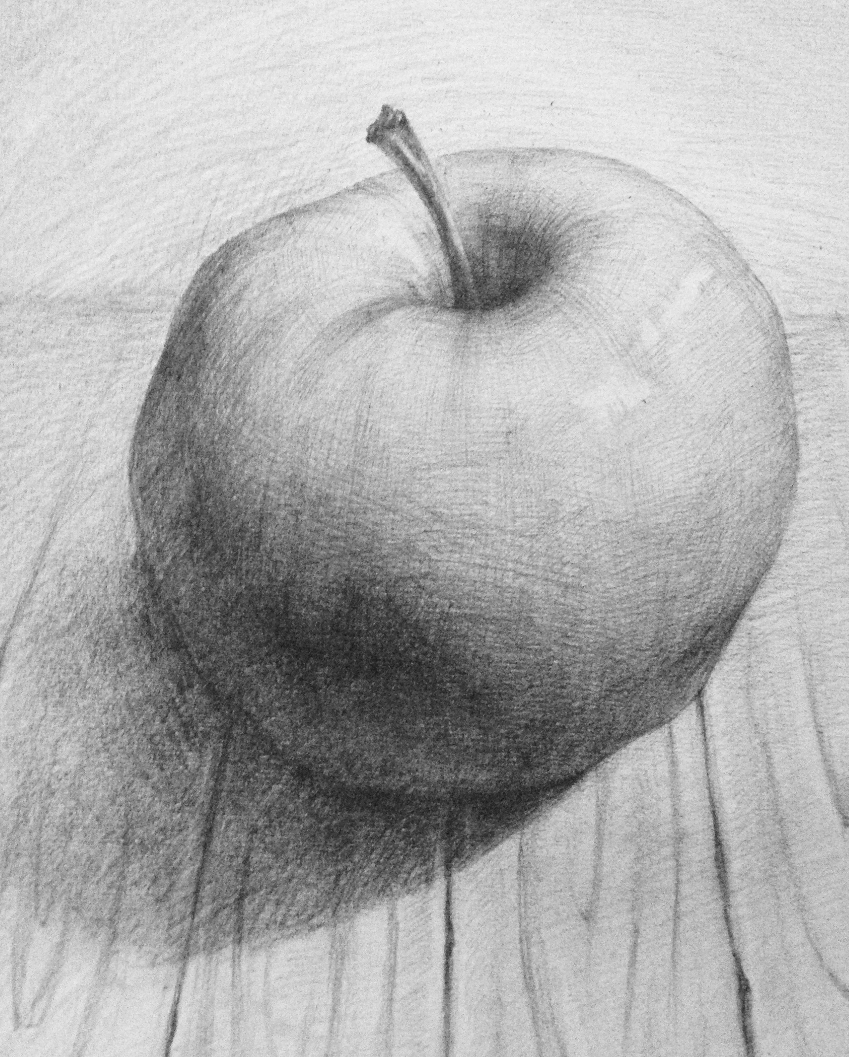 苹果素描图片
