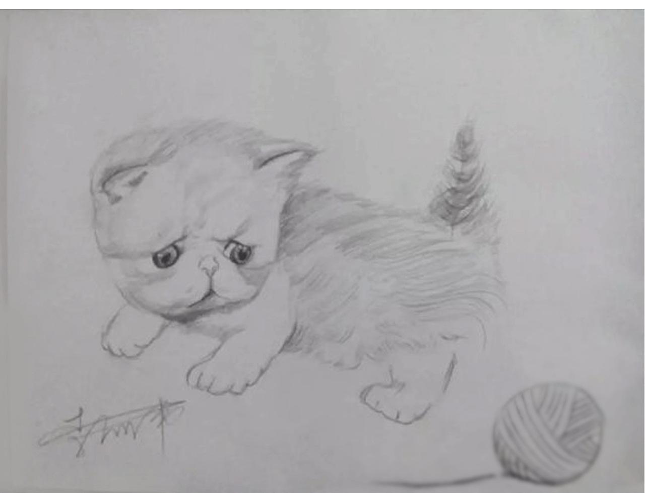 手绘素描练习图片
