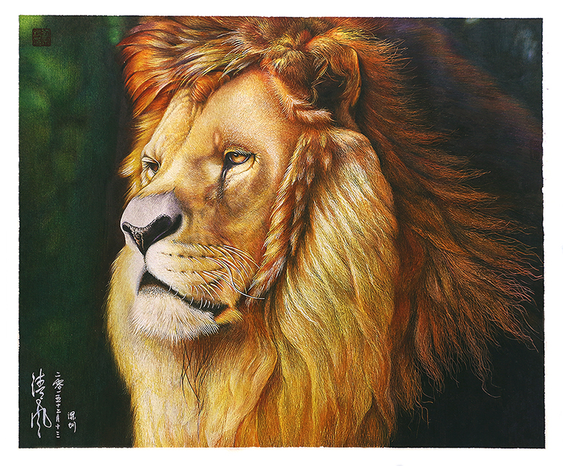 雄狮(写实 手绘彩铅 狮子 )