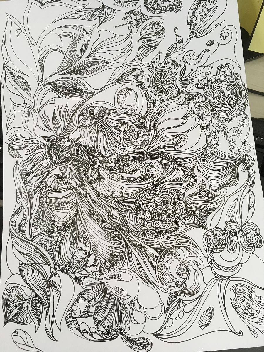 手绘 黑白插画 植物