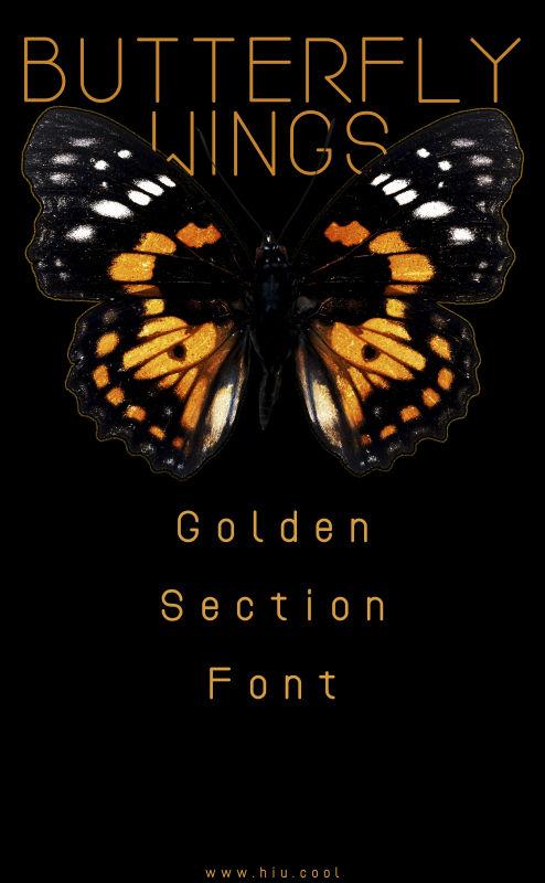 黄金分割字形带给到底设计师?|字体/个人比例名片设计稿图片