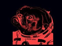 狗年活动海报
