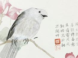 鸟闹枝头花含羞