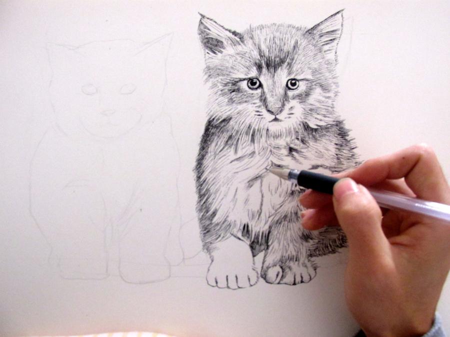 画动物 作品 素描 纯艺术 兔子凌