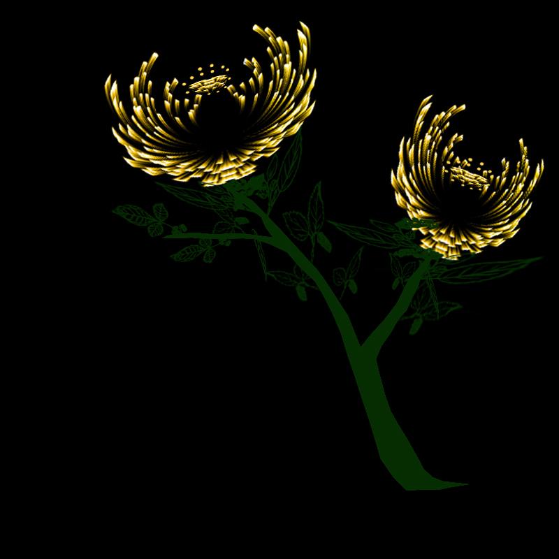 滤镜做的秋菊