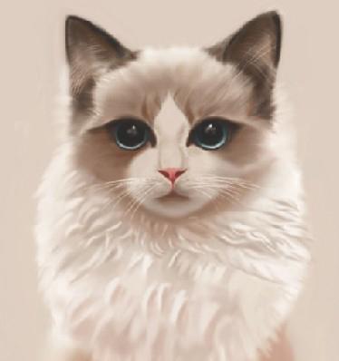 手绘猫咪图片大全可爱