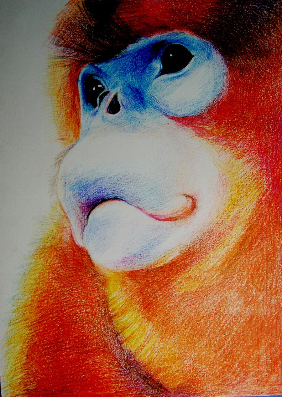 彩色铅笔荧光笔手绘