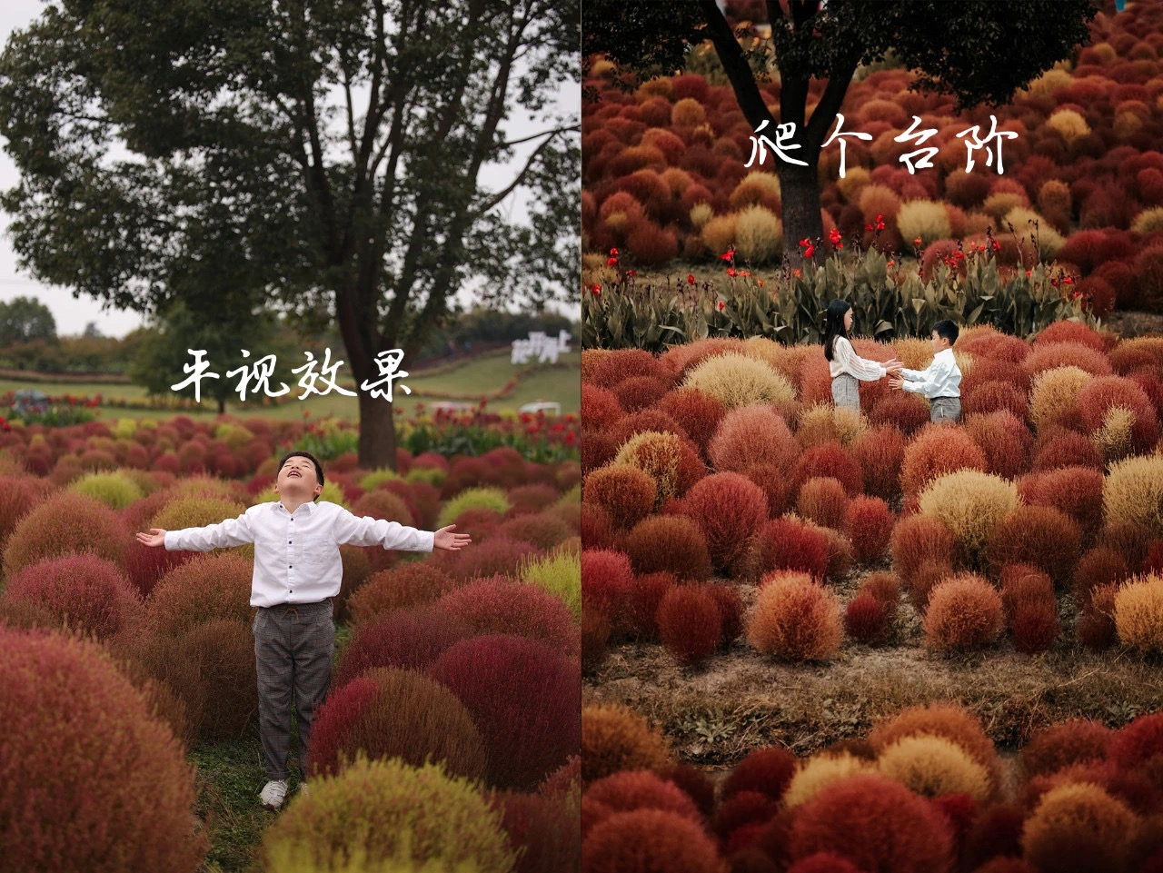 手把手教你在公园拍出秋日怀旧电影大片插图(11)