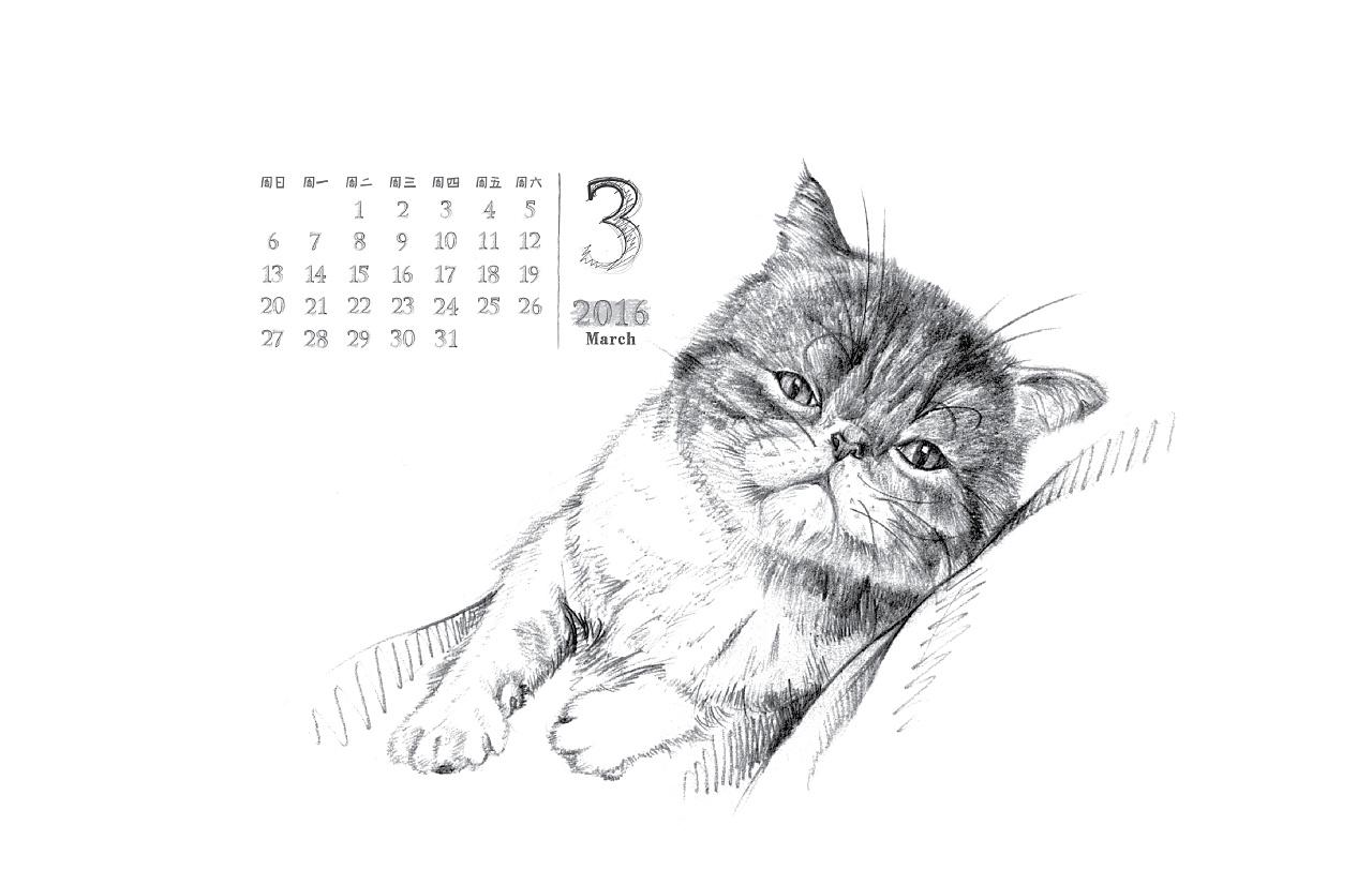 肉丸是只猫-2016台历