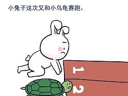 这次小兔子输的不冤。。。。。