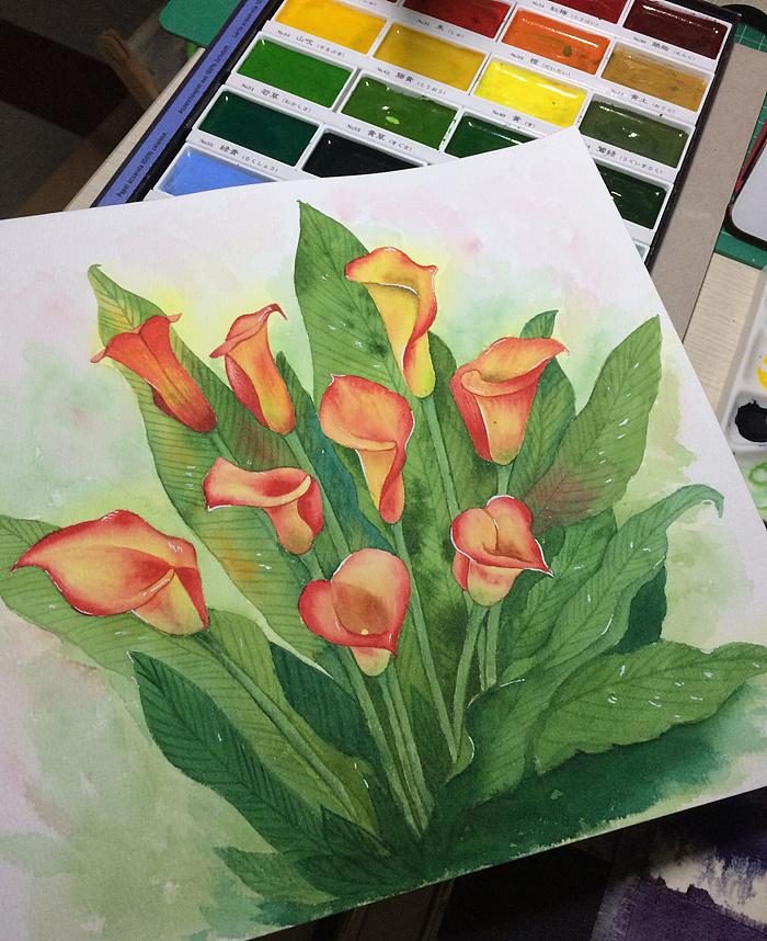 彩色水彩-绘画马蹄莲一步一步走呀走课后反思图片