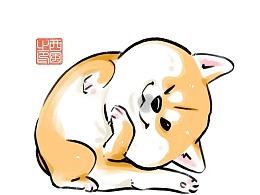 柴犬枸杞 肥美Q弹篇