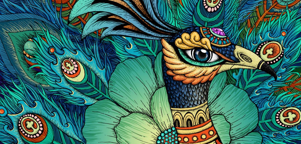 孔雀手绘插画|插画|插画习作|健美糖 - 原创作品