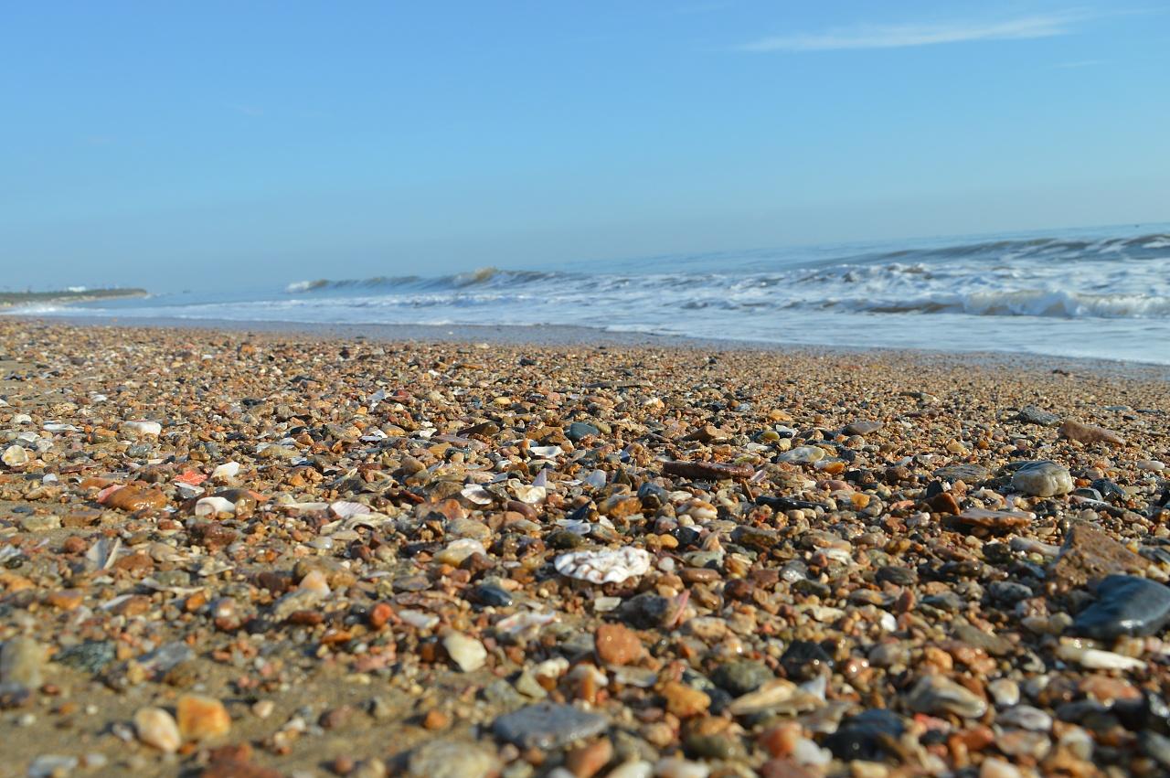 海 海浪 海滩 贝壳 摄影贝壳 沙滩 清晨海滩