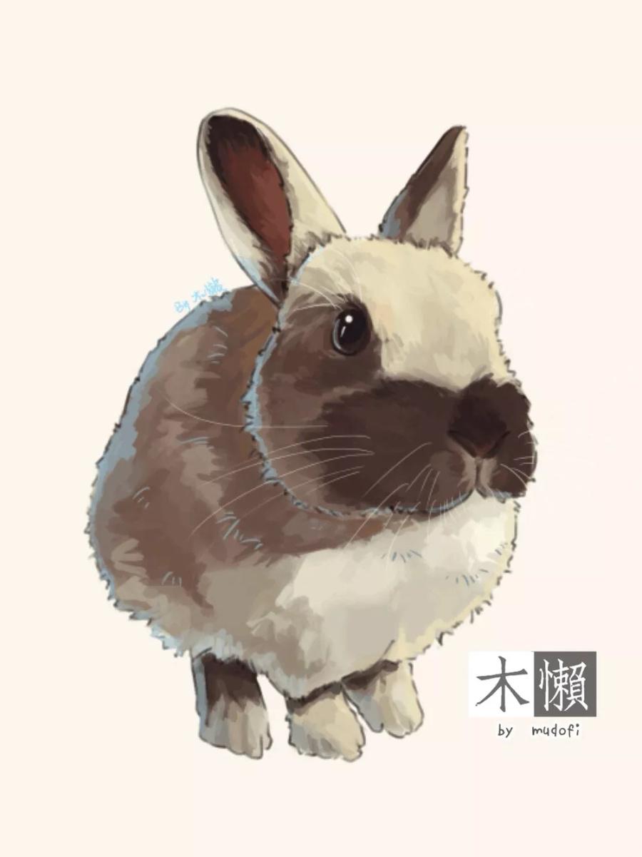 【练习】各种小兔崽子~ 绘画习作 插画 一棵木懒 - 原创设计作品 - 站酷 (ZCOOL)