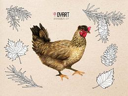 写实手绘鸡蛋包装插画