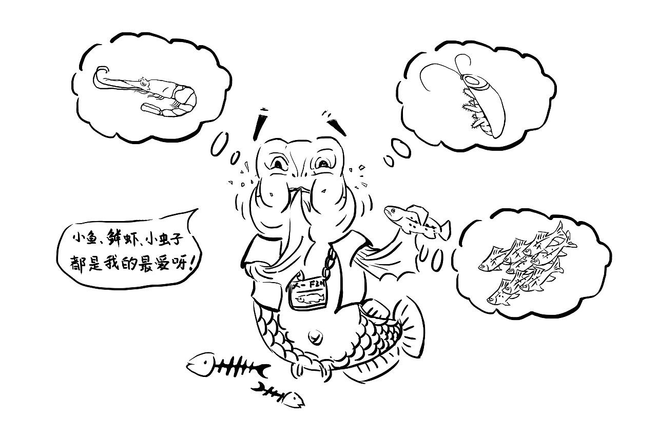 极鱼-龙鱼科普漫画【手绘性插图】阅红颜漫画图片