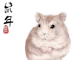 2020小鼠