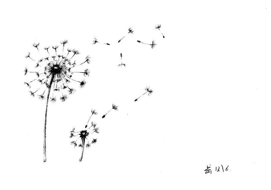 [丘山]手绘插画