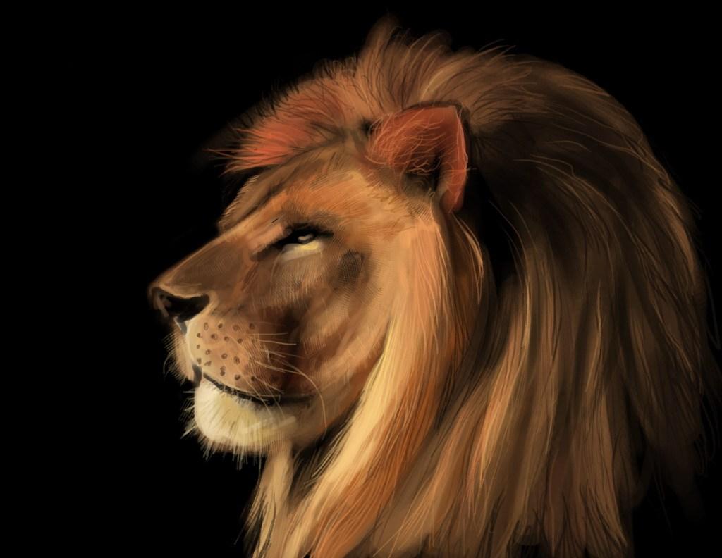 狮子手绘练习