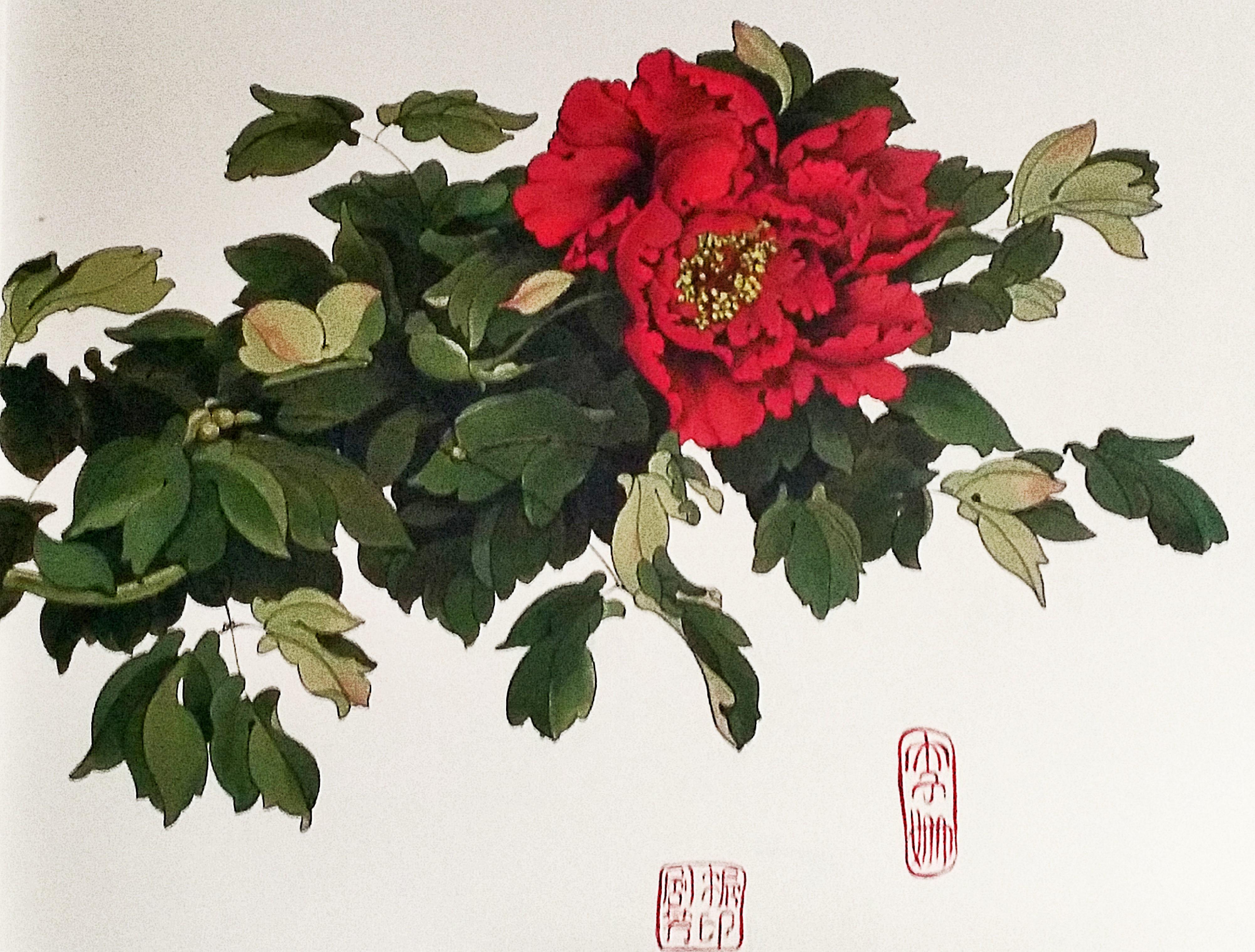 手绘牡丹墙